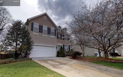 High Point Single Family Home For Sale: 1154 Stonebrier Court