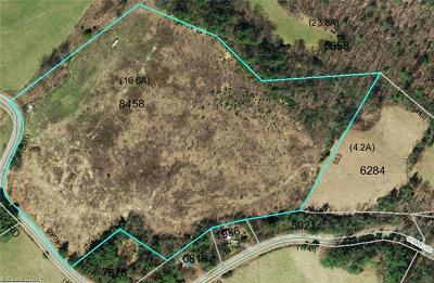 Wilkes County Residential Lots & Land For Sale: 00 Summit Road