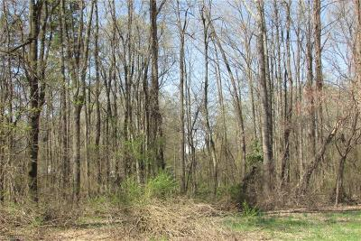 Greensboro Residential Lots & Land For Sale: 3904 & 3904 Zz Randleman Road