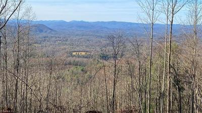 Moravian Falls NC Residential Lots & Land For Sale: $991,800