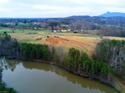 Surry County Residential Lots & Land For Sale: 4524 E Nc Highway 268