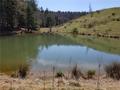 Watauga County Residential Lots & Land For Sale: Off Hayes Welborn Road #Tract 2,