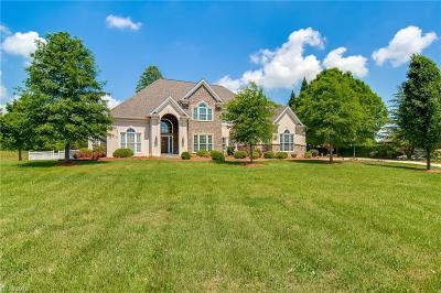 Kernersville Single Family Home For Sale: 1265 Kerner Road
