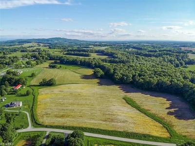 Yadkin County Residential Lots & Land For Sale: 3600 Ireland Road