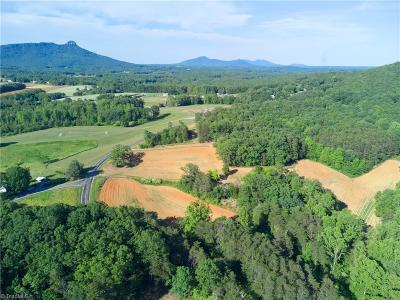 Surry County Residential Lots & Land For Sale: 21ac Shoals Road