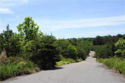 Rural Hall Residential Lots & Land For Sale: Stanleyville Drive