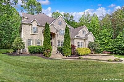 Greensboro Single Family Home For Sale: 405 Pebble Ridge Court