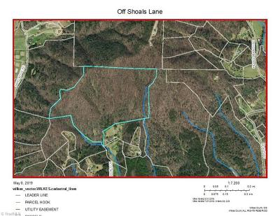 Wilkes County Residential Lots & Land For Sale: Tbd Shoals Lane