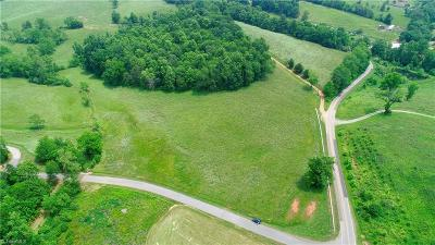 Wilkes County Residential Lots & Land For Sale: Hawks Nest Trail