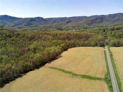 Residential Lots & Land For Sale: Tbd Lambsburg Road