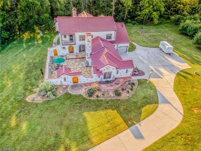 Browns Summit NC Single Family Home For Sale: $989,500
