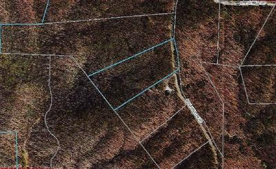 Wilkes County Residential Lots & Land For Sale: Tbd Bell Hollow Road