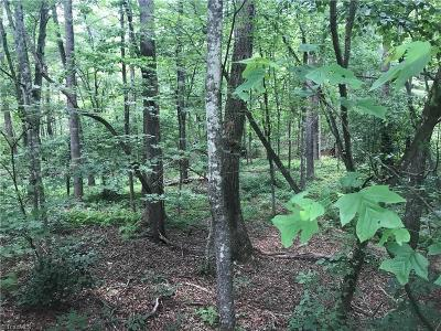 Wilkes County Residential Lots & Land For Sale: 00 W Meadow Parkway #31