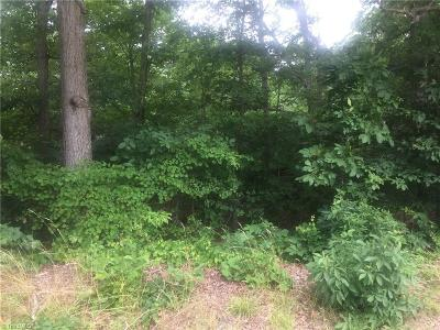 Alamance County Residential Lots & Land For Sale: S Nc Highway 49