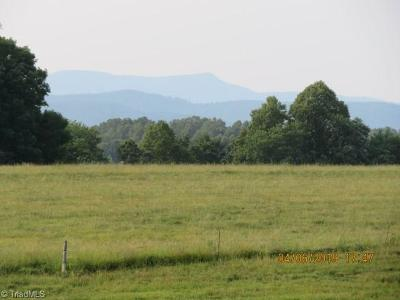 Surry County Residential Lots & Land For Sale: 1 Mountain Park Road