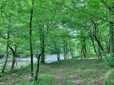 Residential Lots & Land For Sale: 3745 Nc Highway 704 W