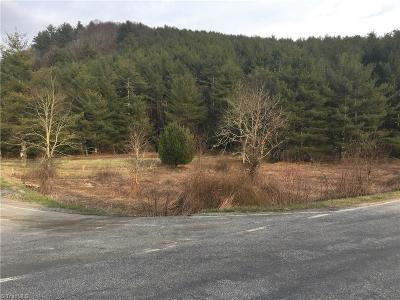 Alleghany County Residential Lots & Land For Sale: Elk Knob Road