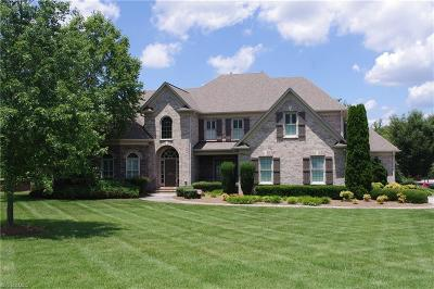 Kernersville Single Family Home For Sale: 471 Bluff School Road