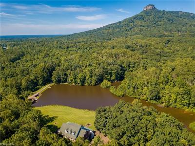Pinnacle NC Single Family Home For Sale: $849,000