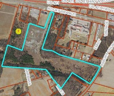 Yadkin County Residential Lots & Land For Sale: 48.06+/- Rocky Branch Road