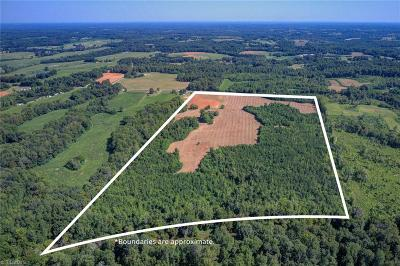 Guilford County Residential Lots & Land For Sale: 7232 Busick Quarry Road