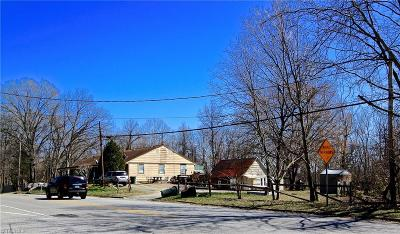 Greensboro Commercial For Sale: 2804 McConnell Road