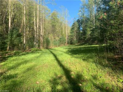 Wilkes County Residential Lots & Land For Sale: Cane Creek Church Road