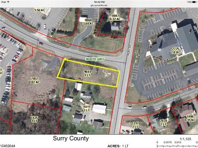 Surry County Residential Lots & Land For Sale: 1210 Park Drive