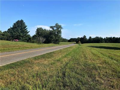 Mayodan Residential Lots & Land For Sale: 73 Ac Park Road