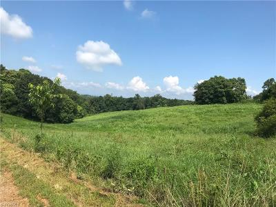 Wilkes County Residential Lots & Land For Sale: 950 Antioch Church Road