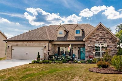 Davidson County Single Family Home For Sale: 162 Sedona Drive