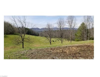 Caldwell County Residential Lots & Land For Sale: 4395 Mud Puddle Lane