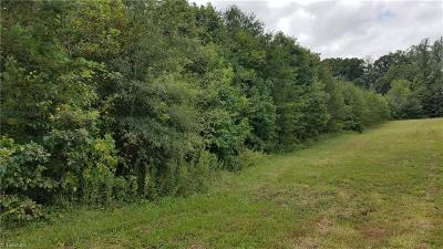 Residential Lots & Land For Sale: 00 Piney Mountain Road