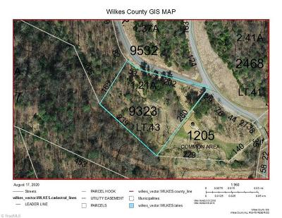 Wilkes County Residential Lots & Land For Sale: Chestnut Falls Drive
