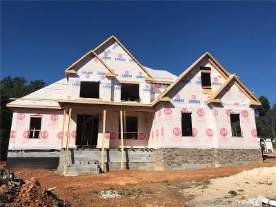Lexington Single Family Home For Sale: 688 Kapstone Crossing