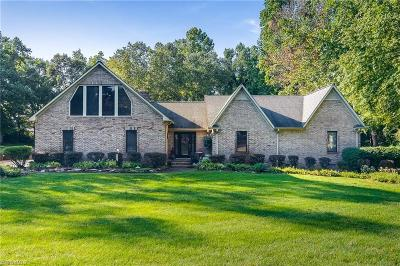 Colfax Single Family Home For Sale: 8805 Cedar Spring Drive