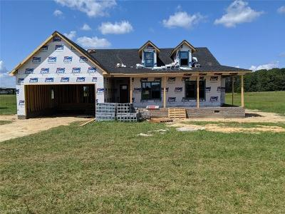 Reidsville Single Family Home For Sale: 2963 Iron Works Road
