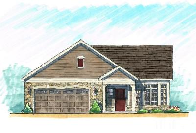 Cary Single Family Home Pending: 18 Vineyard Mist Drive #18
