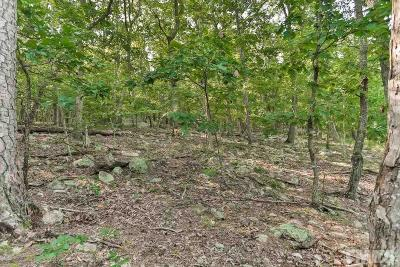 Chatham County Residential Lots & Land For Sale: 13103 Morehead