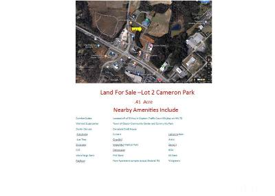 Johnston County Commercial Lots & Land For Sale: 1389 Cameron Way