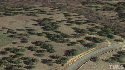 Orange County Residential Lots & Land For Sale: Lot 16 Triple Creek Drive