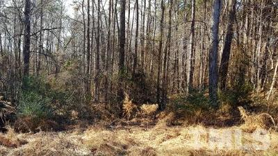 Durham County Residential Lots & Land For Sale: 206 Hocutt Road
