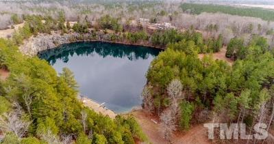 Chatham County Residential Lots & Land For Sale: 2908 Goldston Carbonton Road