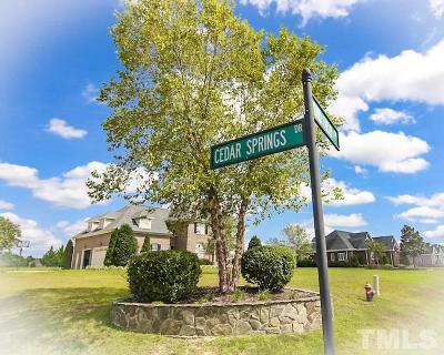Johnston County Residential Lots & Land For Sale: 328 Cedar Springs Drive