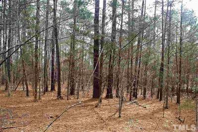 Pittsboro Residential Lots & Land For Sale: 142 Neil Carter Drive