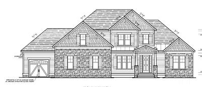 Chatham County Single Family Home For Sale: 89 Brookhaven Way #Lot 40b