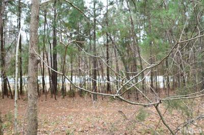 Chatham County Residential Lots & Land For Sale: Lot 11 Farrington Point
