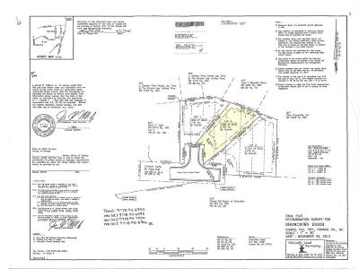 Orange County Residential Lots & Land For Sale: 132 Lincoln Lane