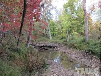 Orange County Residential Lots & Land For Sale: Lot 7 Preservation Forest Lane