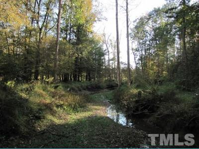 Orange County Residential Lots & Land For Sale: Lot 8 Preservation Forest Lane